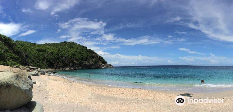Shell Beach1