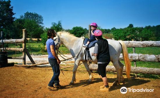 Moncerlongo Ranch1