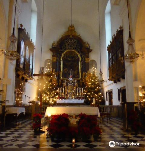 Church of Our Lady of Succor (Mariahilferkirche)2