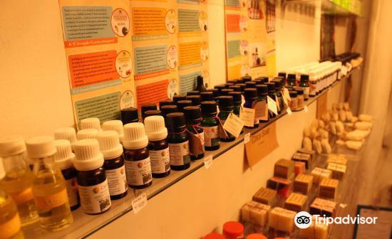 Museo de Plantas Sagradas, Magicas y Medicinales1