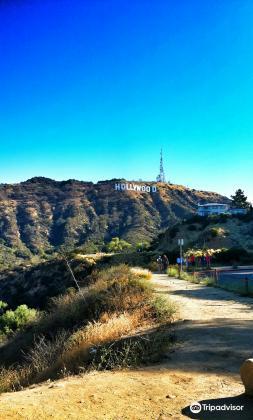 Hollywood Hills2