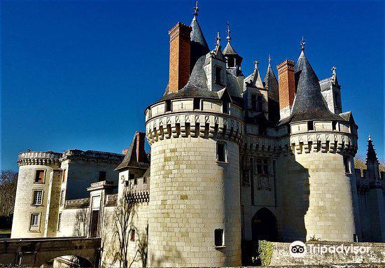 Chateau de Dissay2