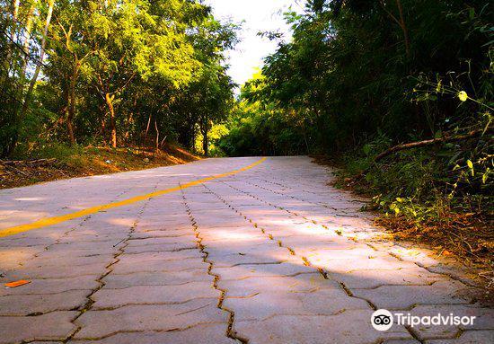 Pradyuman Park