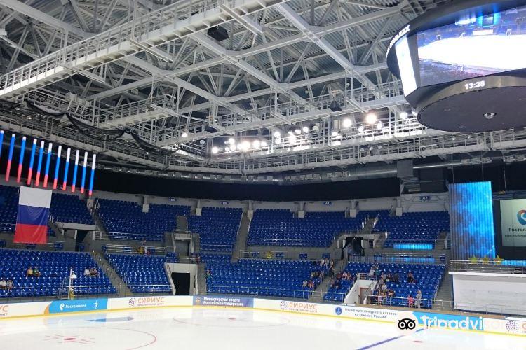 Shayba Arena4