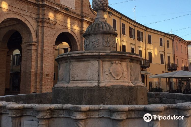 Piazza Cavour2