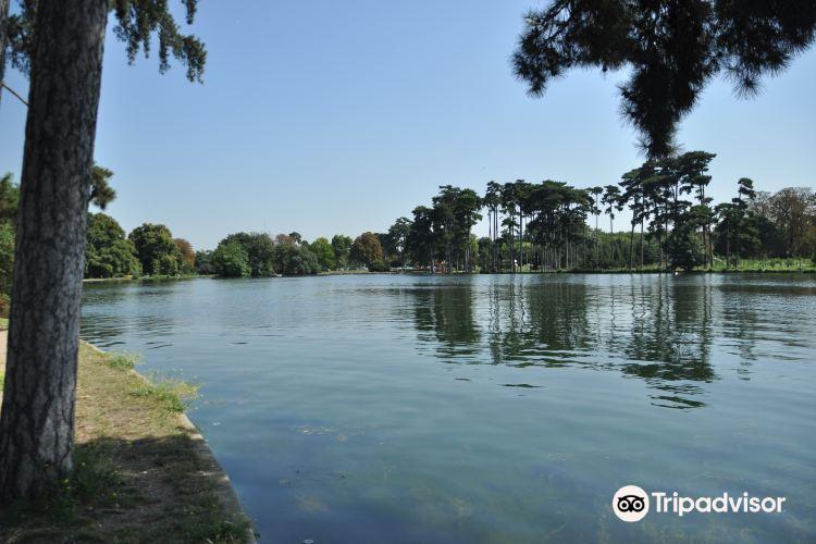 Bois de Boulogne3