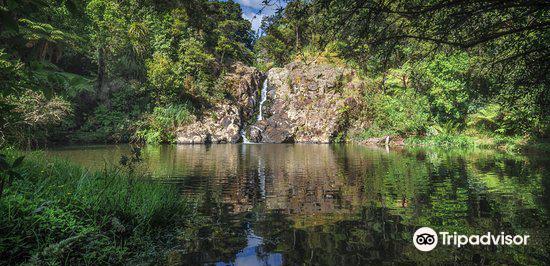 Te Maketu Waterfall