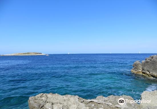 Punta Kamenjak3