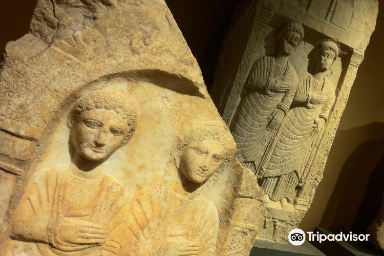 Antikenmuseum (Museum of Antiquities)4
