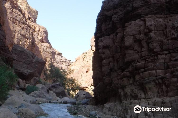 Wadi Zarqa Ma'in1