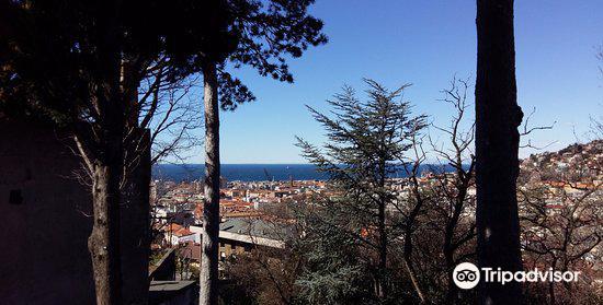 Botanical Garden of Trieste3