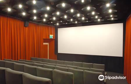Irish Film Institute3