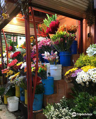 Mercado Nacional de Artesanias4