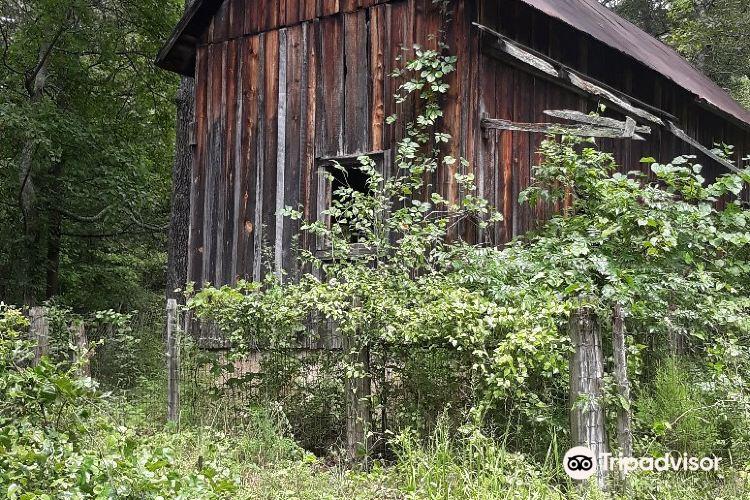 Allentown Historic District1