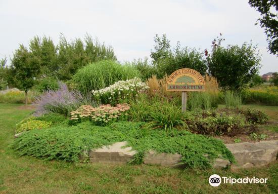 Aurora Arboretum4