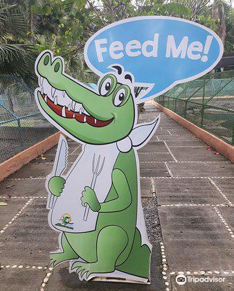 Davao Crocodile Park4