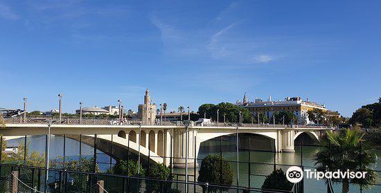 Puente de San Telmo1