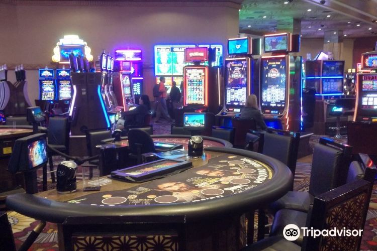MGM Grand Hotel & Casino1