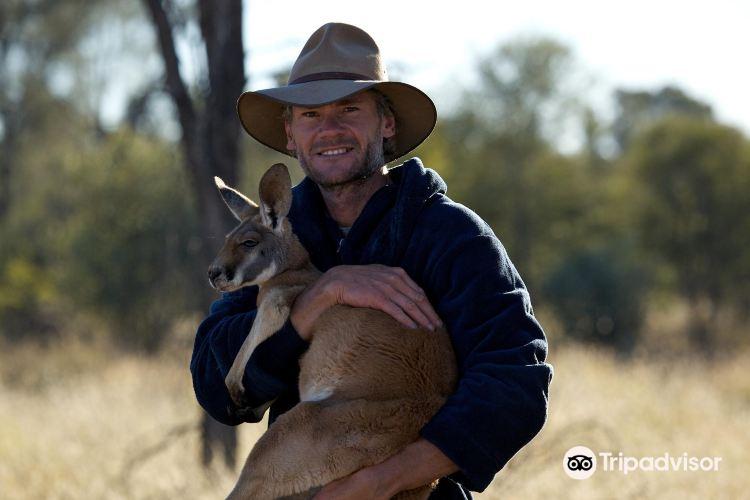 The Kangaroo Sanctuary4