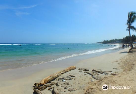 Playa Guayacanes3