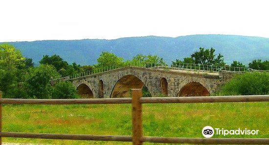 朱利安橋2