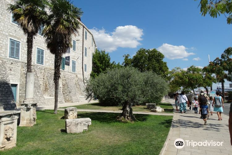 Sibenik City Museum