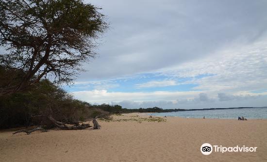 尼拉海灘2