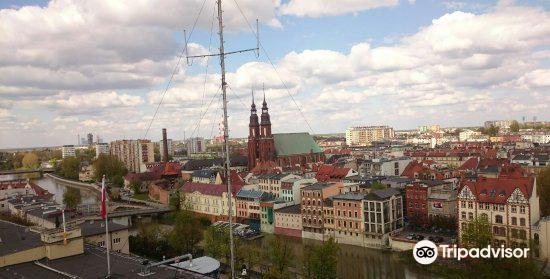 Piast Tower3