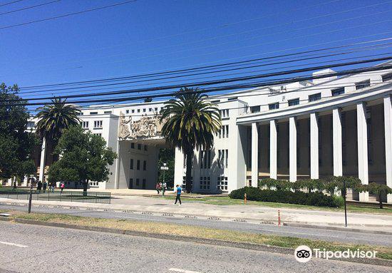 Universidad De Concepcion2