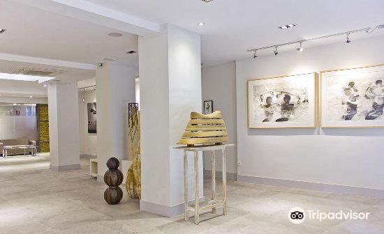 Shiras Galeria1