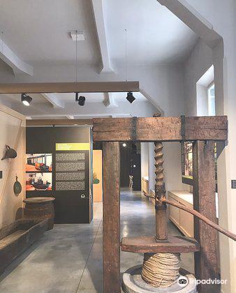 Museum Olei Histriae1