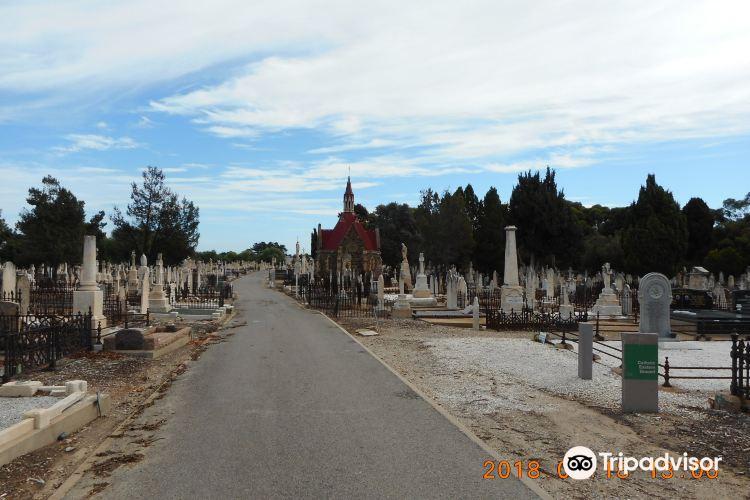 West Terrace Cemetery1
