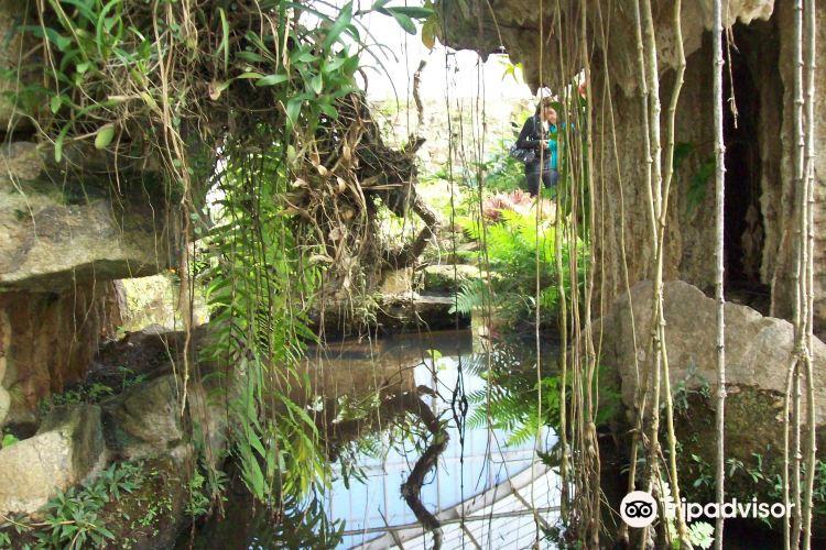 Springs of the Ipiranga State Park1
