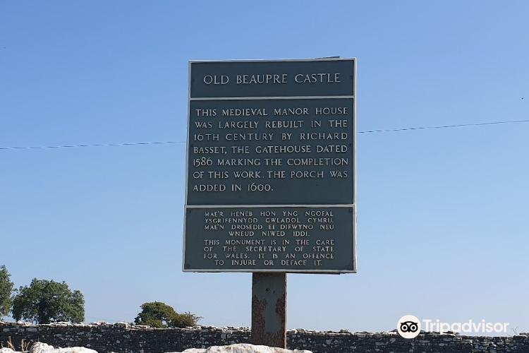 Beaupre Castle1