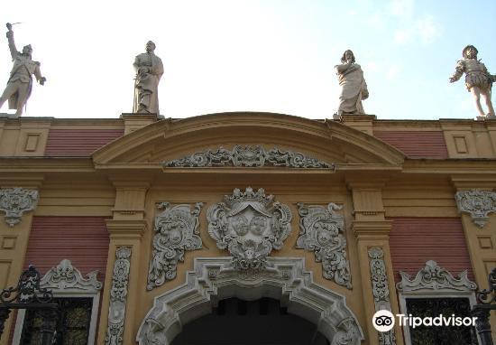 Palacio de San Telmo4