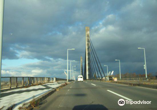 Twin Harp Bridge1