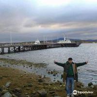 纳塔莱斯港图片