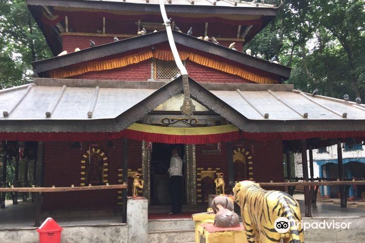 Bhagwati Temple3