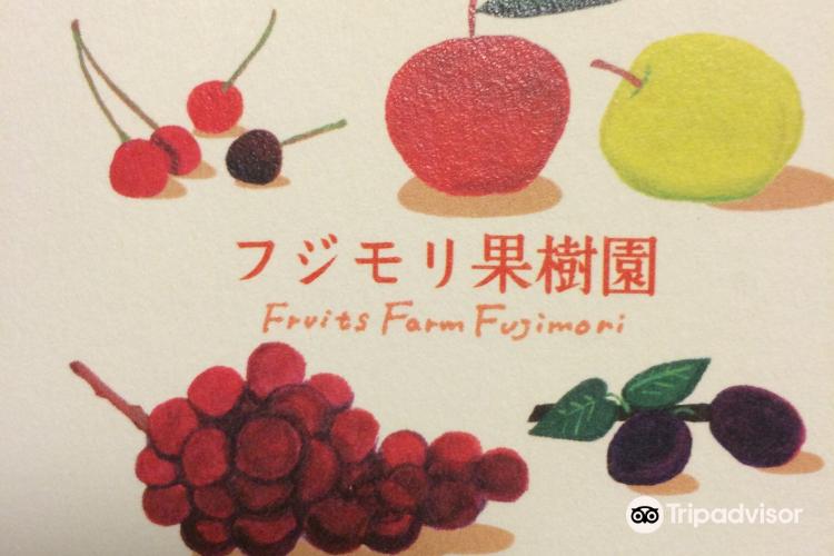Fujimori Orchards2