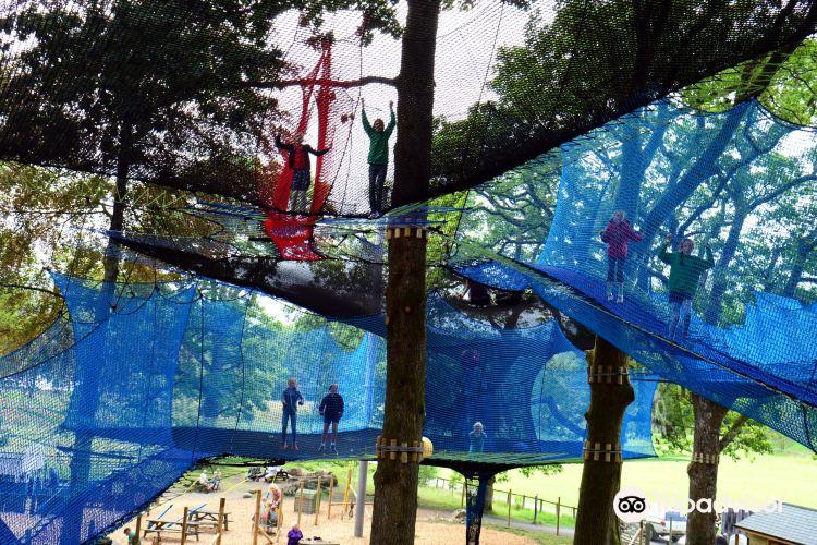 Treetop Nets1
