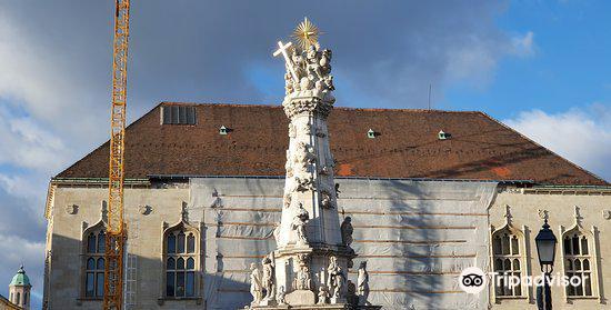 Holy Trinity Column (Szentháromság Szobor)2