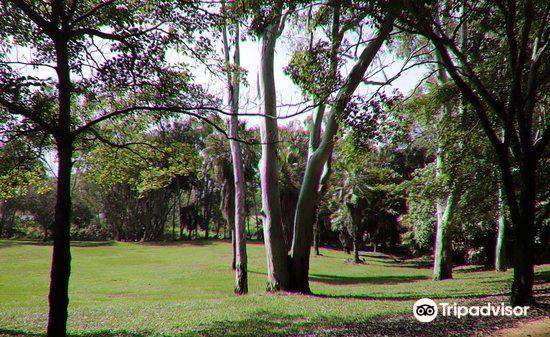 Tondoon Botanic Gardens1