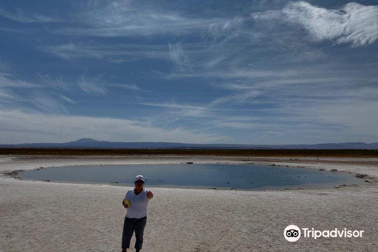 Laguna Cejar1