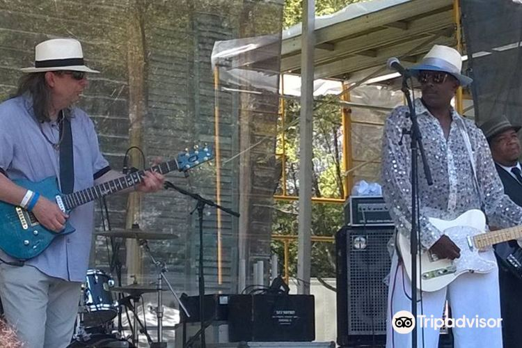 Chicago Blue Festival2
