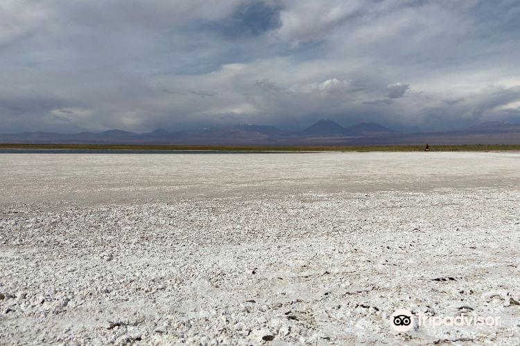 Laguna Cejar4