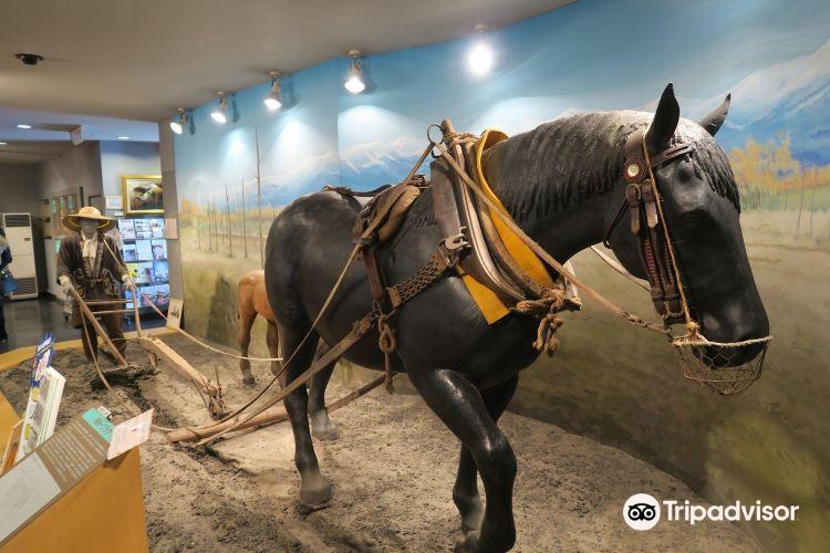 Horse Museum1