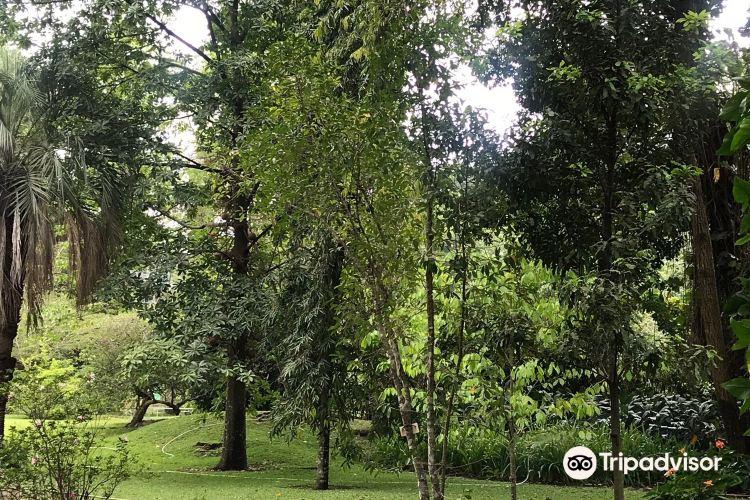Jardin Botanico La Laguna3