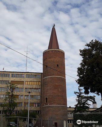 Piast Tower4