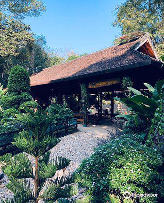 Angkor Zipline2