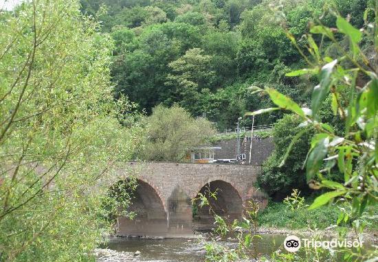 Drusus Bridge1
